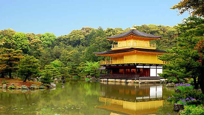 京都府の神待ち家出少女掲示板